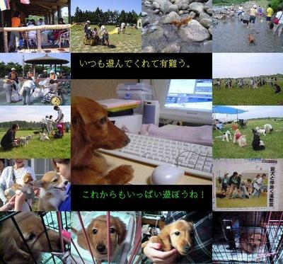 5sai_2